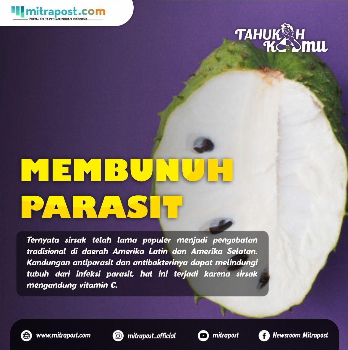 Manfaat buah sirsak untuk kesehatan tubuh