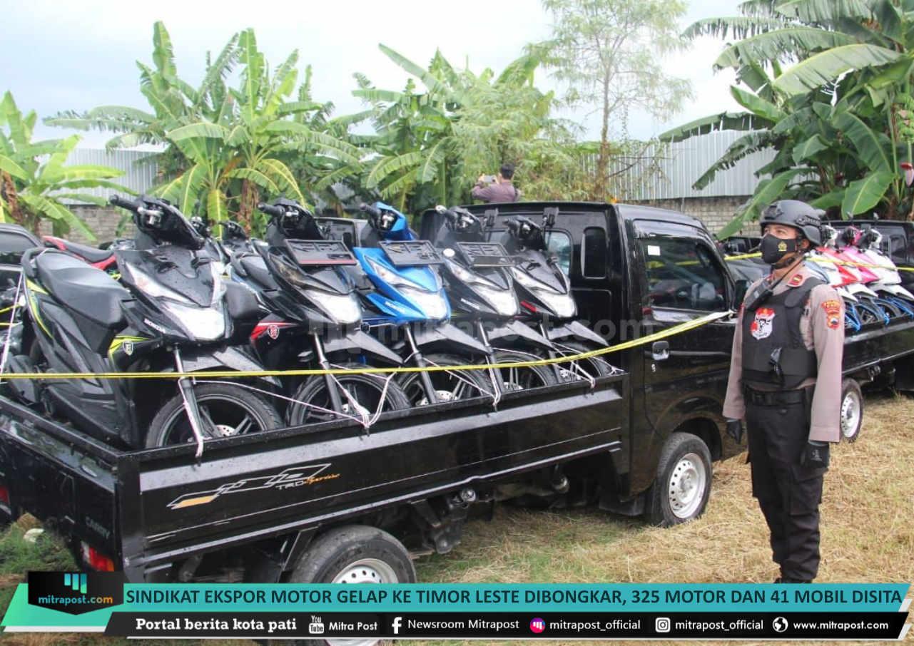 Sindikat Ekspor Motor Gelap Ke Timor Leste Dibongkar 325 Motor Dan 41 Mobil Disita - Mitrapost.com