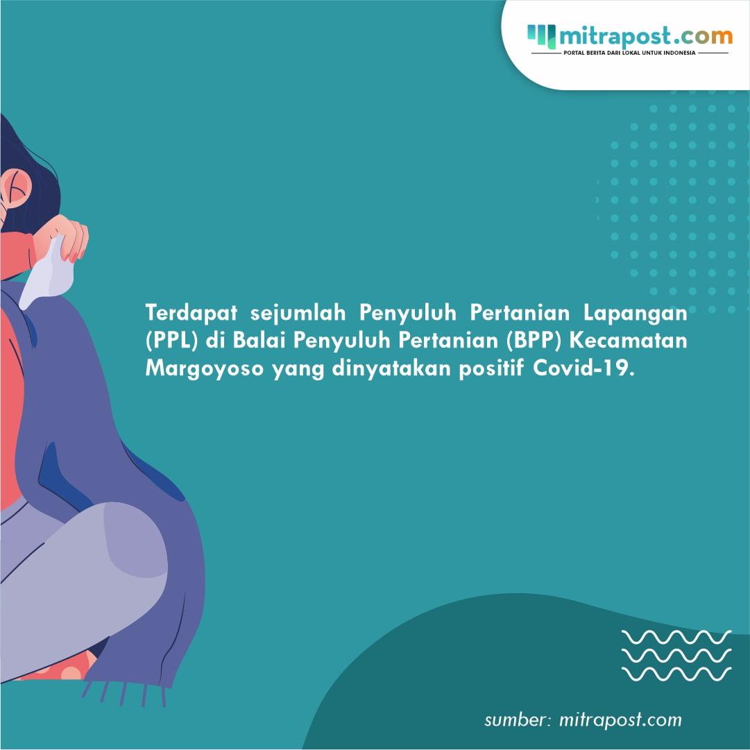 3 PPL Positif Covid-19, Program BPP Margoyoso Dibantu PPL Swadaya B
