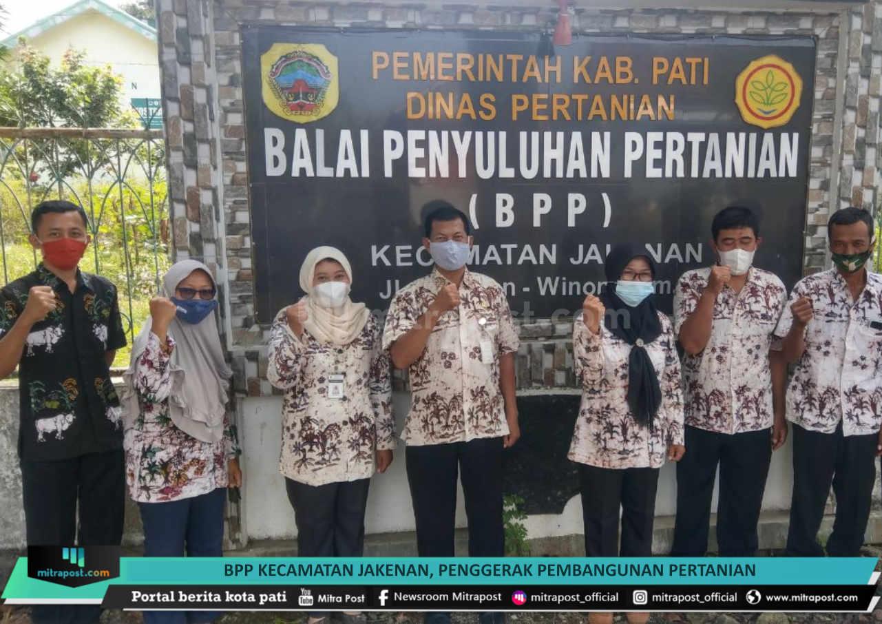 Bpp Kecamatan Jakenan Penggerak Pembangunan Pertanian - Mitrapost.com