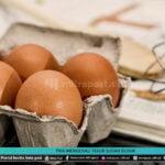 Trik Mengenali Telur Sudah Busuk - Mitrapost.com