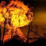 14 Hektare Taman Nasional Bromo Terbakar, Begini Kronologinya