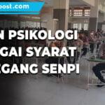 149 Personel Polres Pati Ikuti Ujian Psikologi Sebagai Syarat Pemegang Senpi Organik Polri - Mitrapost.com