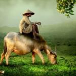Art Hingga Petani Punya Daya Beli Naik