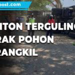 Hilang Konsentrasi Truk Tronton Terguling Dan Menabrak Pohon Di Trangkil - Mitrapost.com